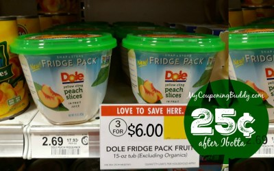 Dole Fridge Pack 25¢ at Publix (after Ibotta)