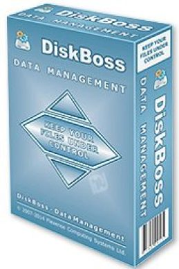 DiskBoss Ultimate Crack With Latest Activation Key Free Download