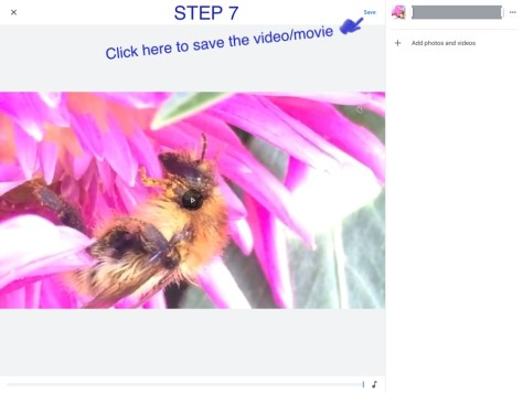 step 7 video mp4