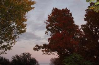 Sunset Nov 25 (12)