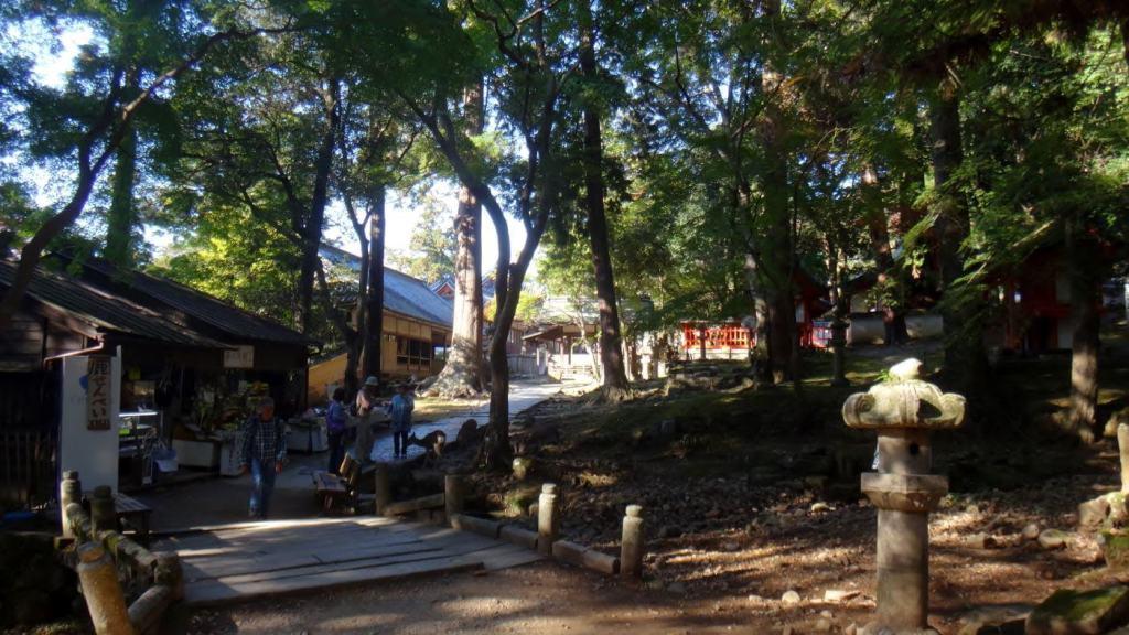 Le parc avec quelques daims et un temple