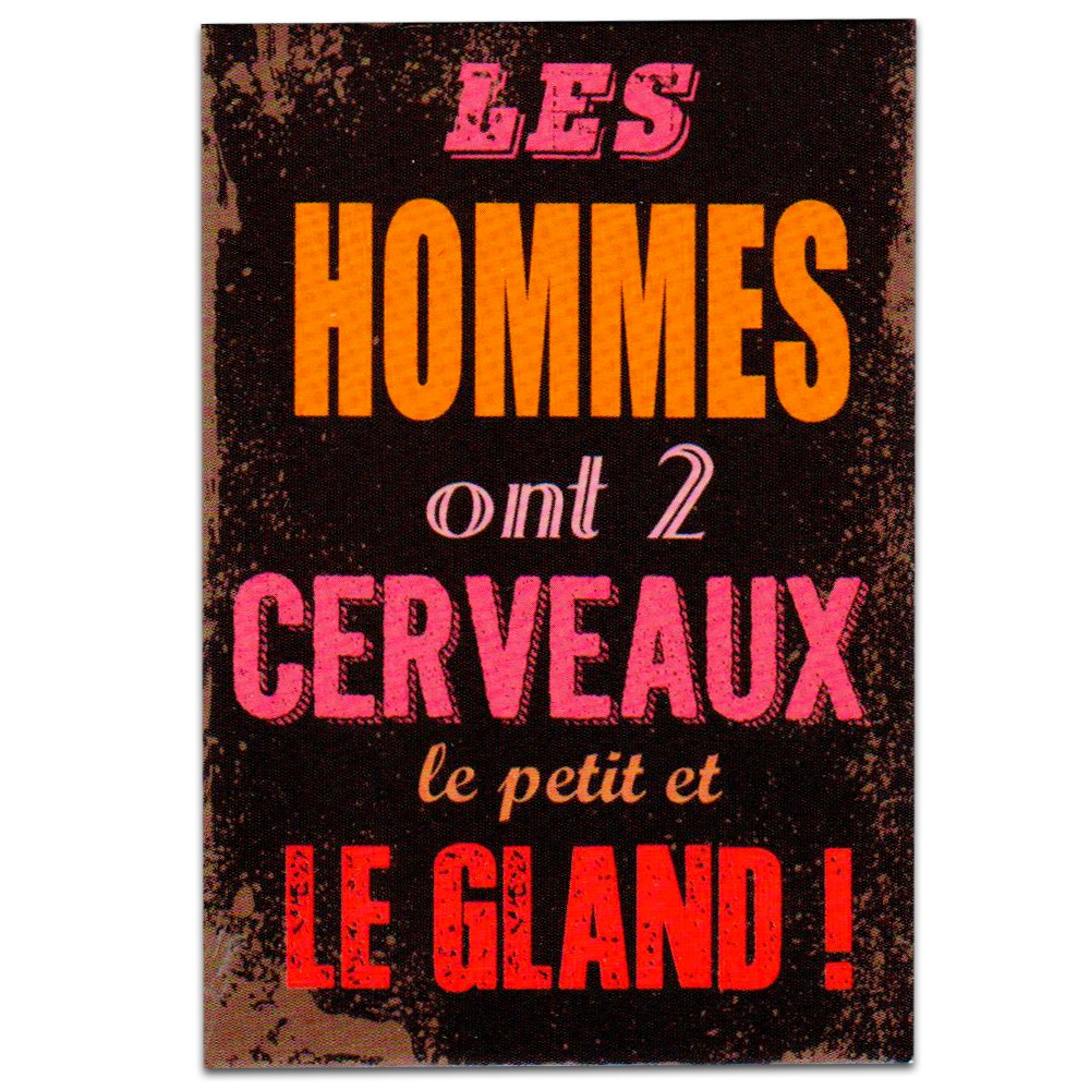 Magnets Humour Homme Femme 695