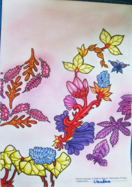 Contest by Christopher King for facebookgroup The Creative Colouring Group 01-30 June
