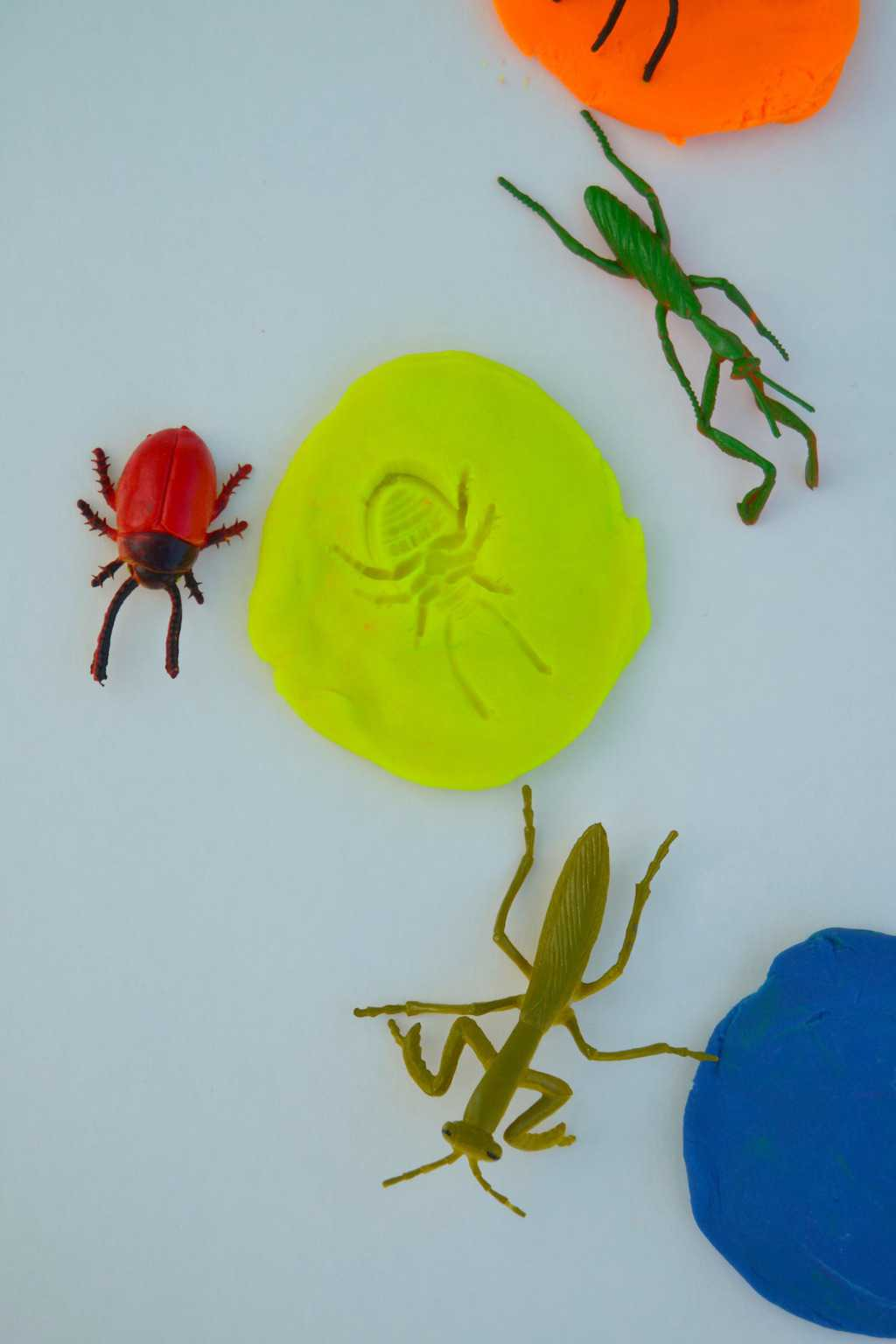 8 Bug Activities For Kids To Keep Them Active And Entertained