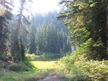 Lake Susan Jane
