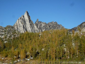 Enchantments_MCP_806