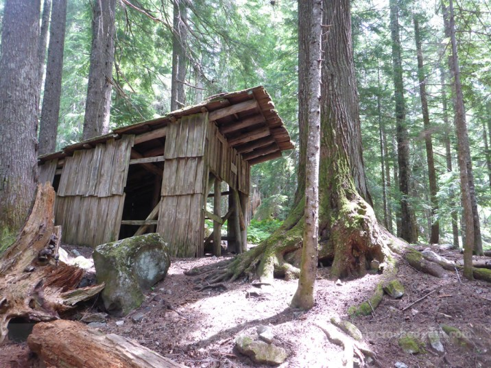 The Mackinaw Shelter