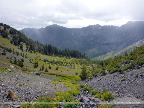 Looking back down on the alpine meadow
