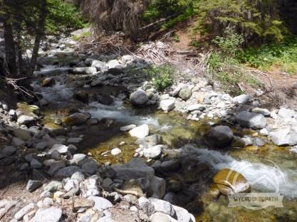 Ingalls Creek