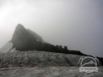 Muir in the mist