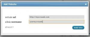 Add Website ManageWP