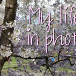 My life in photo's – juli #3