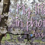 My life in photo's – Augustus #1