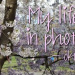 My life in photo's – Oktober #4