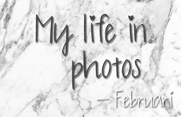 mylifeinphotos-feb