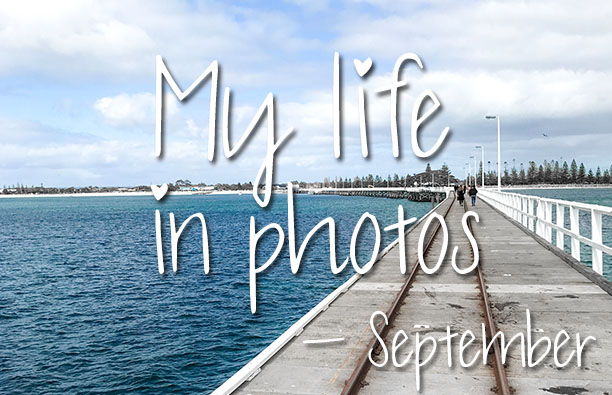 mylifeinphotos-sept17