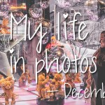 My life in photos – december 2018 #3