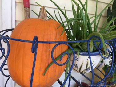 Because I just love pumpkins!