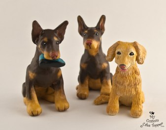 Erins 3 Dogs, Dobermans and Golden Retriever