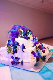 Kyla Zatti's Penguin and Bobcat Cake Topper