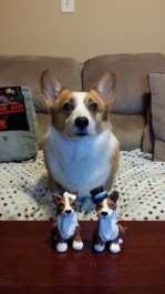 Marti's Corgi Cake Toppers and Her Dog