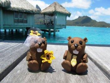 Beavers On Honeymoon In Bora Bora