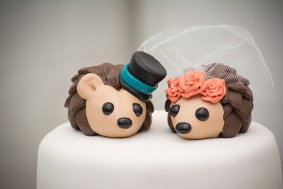 Amanda's Hedgehog Cake Topper