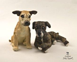 Sarah's Dogs