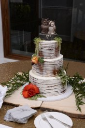 Tara's Custom Owl Stump Birch Tree Wedding Cake