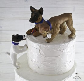 Dogs Fayth's Digging and Licking the Wedding Cake