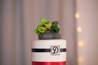 Kim's Veiled Chameleons Cake Topper 3