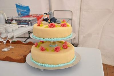 Steve's Penguin and Seal Cake Topper 2