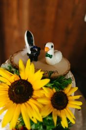 Meg's Skunk and Goose Cake Topper