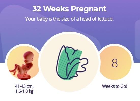 32 week pregnancy