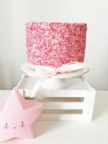Babshower Sprinkle Cake 03