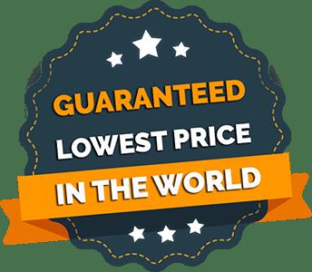 lowest price guaranteed cv resume mycvdesigner.com