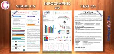 Text vs Visual vs Infographic Resume: Which one to use?