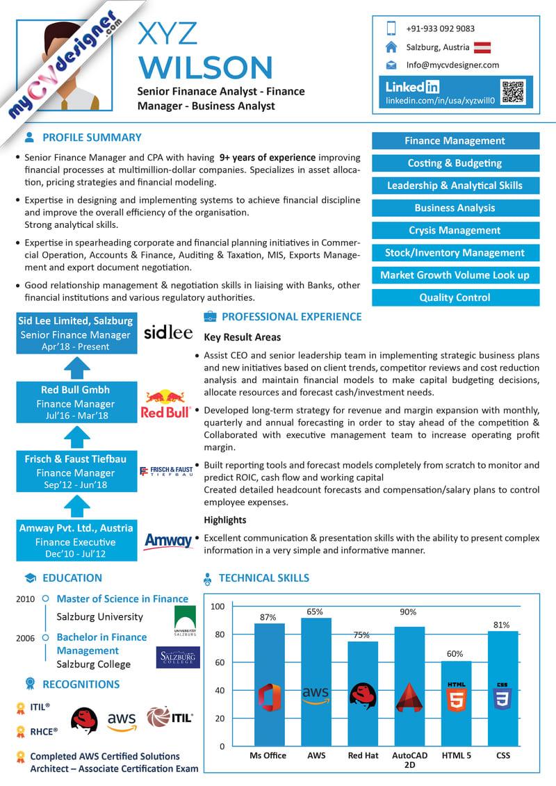 visual infographic cv resume sample MCDI0026