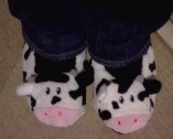 Soft cow slippers