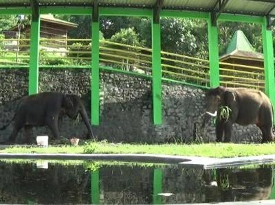 10 Gambar Waduk Gajah Mungkur Wonogiri Harga Tiket Masuk