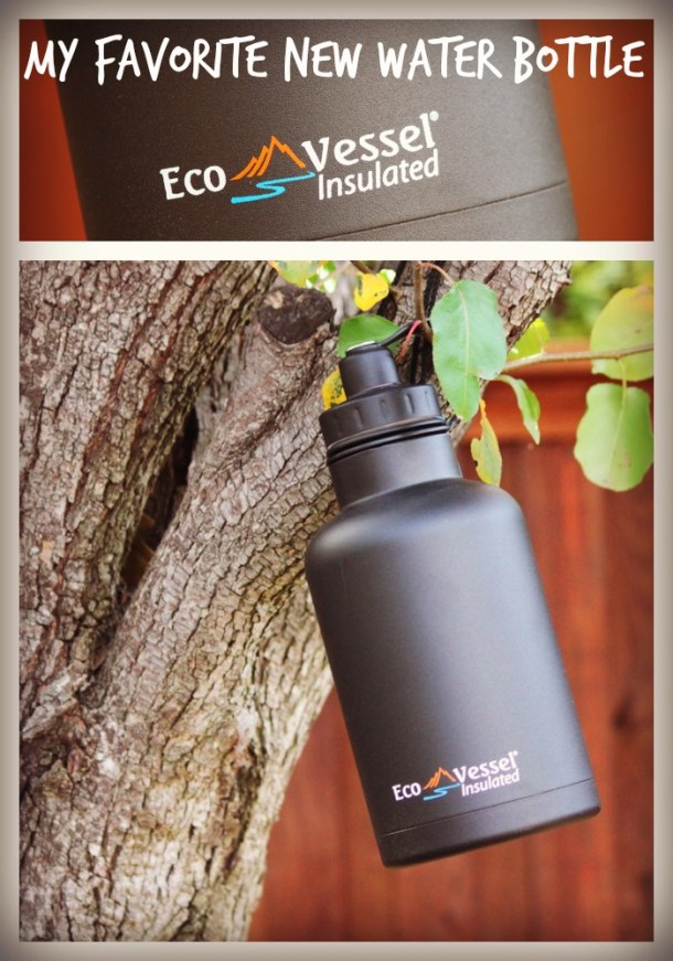 Eco Vessel ~ My Favorite Water Bottle