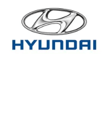 Hyundai Test Drive ~ Get $30 Gift Card - My Dallas Mommy