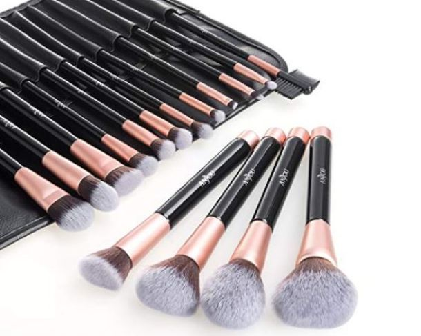 Anjou 16-Piece Makeup Brush Set $11.99 Shipped