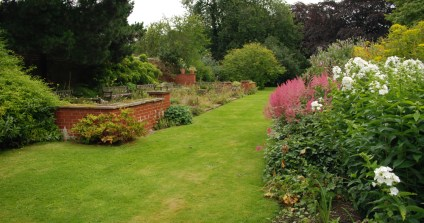 Herbaceous border and patio in summer
