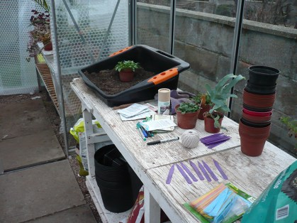 A clear and tidy bench