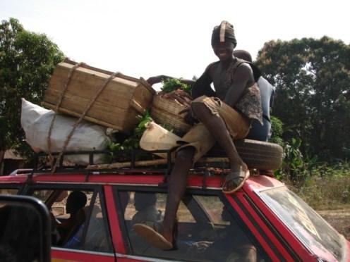 the regular transport ... including livestocks