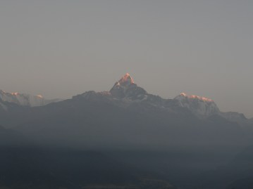 PokharaNPL (209)