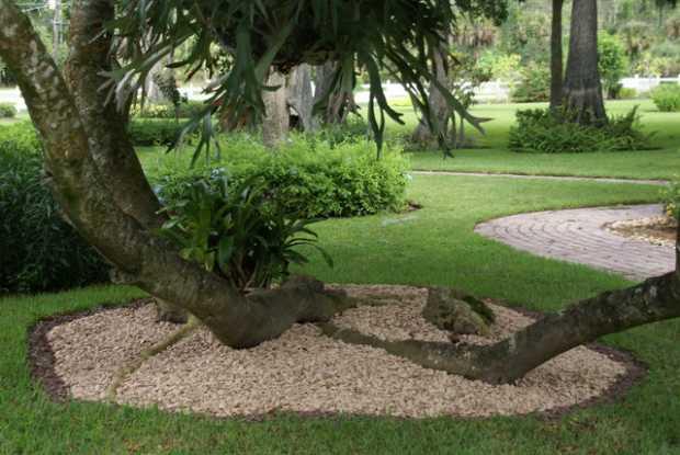 Decorative Lawn Stones