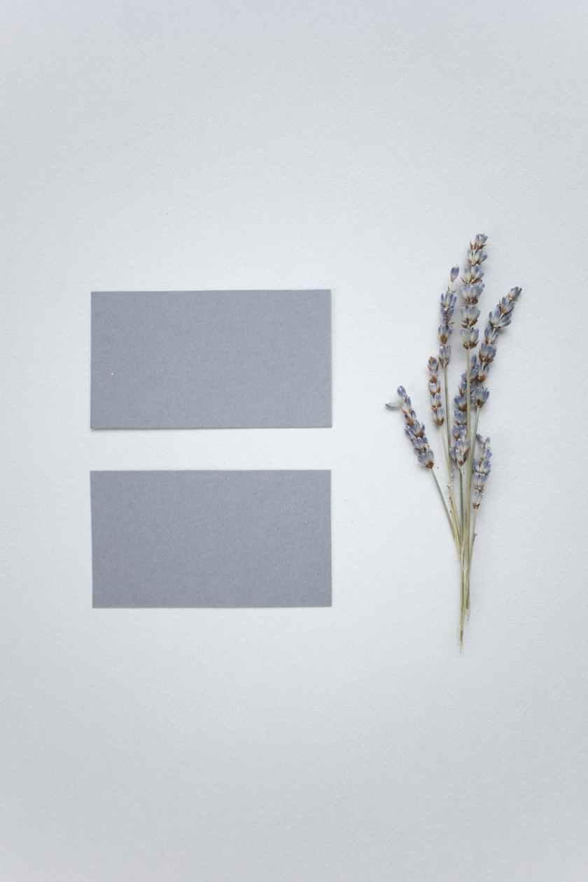 blank business cards near flower