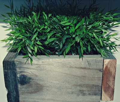 Diy rustic palet planter